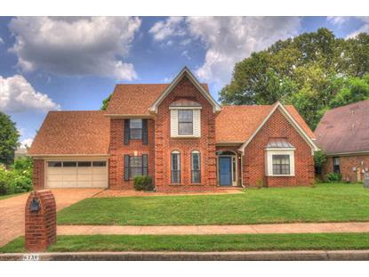6130 CAMELIA  Bartlett, TN MLS# 9979831