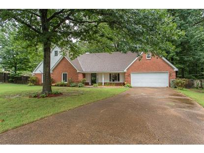 8544 GUNNER HILL  Cordova, TN MLS# 9981995