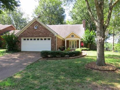 1420 WOOD TRAIL  Cordova, TN MLS# 9982646