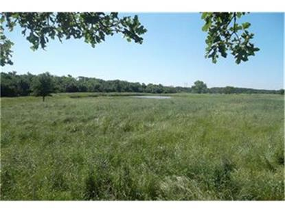 TBD County Rd 307  Grandview, TX MLS# 11937393