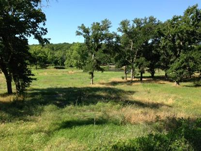 0000 Spring Mountain Road  Cross Roads, TX MLS# 12105817