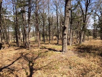 Lot 17 Castle Pines  Gordonville, TX MLS# 12128495