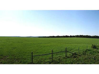 TBD Highway 16  Desdemona, TX MLS# 12151637