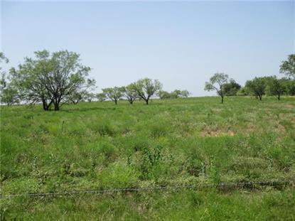 0000 FM 113 Road  Millsap, TX MLS# 12166273