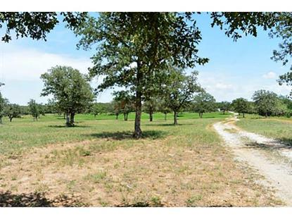 2100 Farm Road 113  Millsap, TX MLS# 12181028