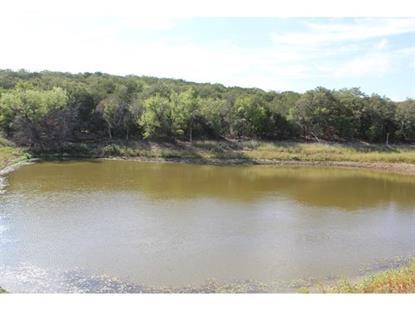 100 acres Tudor Road  Desdemona, TX MLS# 13014690