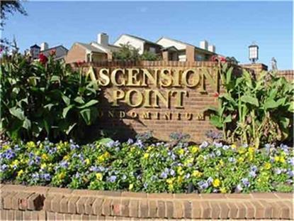 1650 Ascension Bluff Drive  Arlington, TX MLS# 13025107