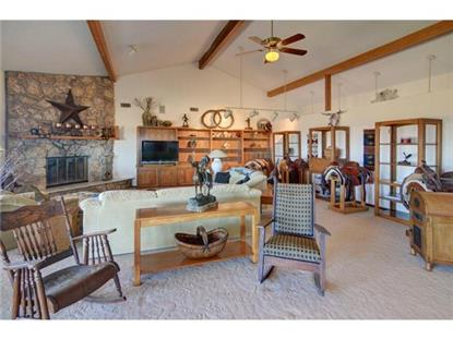 2300 Cox Road  Millsap, TX MLS# 13033073