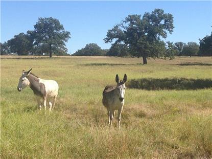 TBD Fairview Rd  Millsap, TX MLS# 13035948