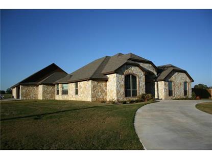 2801 County Road 301  Glen Rose, TX MLS# 13052910