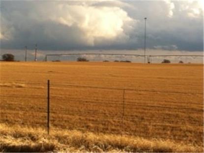 7810 N Highway 16  Desdemona, TX MLS# 13066125