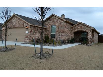 3613 Fallmeadow Street  Denton, TX MLS# 13083324