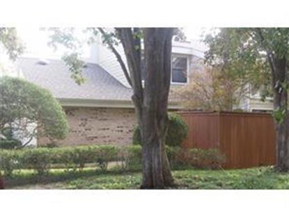 2103 Brook mount Court  Carrollton, TX MLS# 13120261