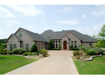 1020 Lady Amber Court  Granbury, TX MLS# 13132333