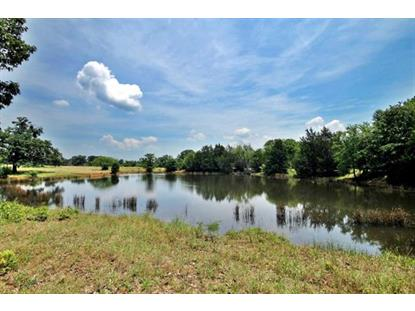 0 Greer Road  Gordonville, TX MLS# 13173052