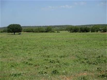 0000 FM 113 Road  Millsap, TX MLS# 13193800