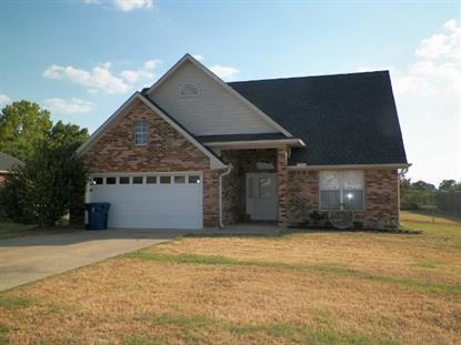131 Posey Lake Drive  Edgewood, TX MLS# 13211824