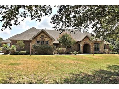 1095 Black Hawk Trail  Glen Rose, TX MLS# 13223991