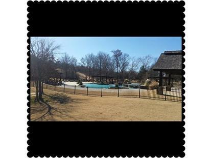 388 Roaring Fork Circle  Gordonville, TX MLS# 13309865