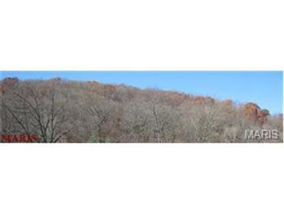 Wedgewood  75 +/- acres House Springs, MO MLS# 14032962