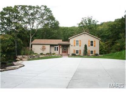 5495 Gamino Lane House Springs, MO MLS# 14046022
