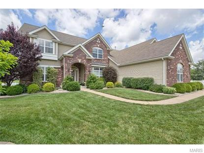 1825 Castle Falls Court Fenton, MO MLS# 15038835