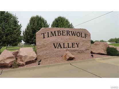 1596 Timber Wolf Drive Festus, MO MLS# 15041998