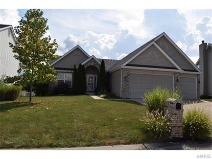 10 Meadow Glen House Springs, MO MLS# 15051424