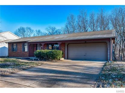 1019 Little Brennen Court Fenton, MO MLS# 16002090