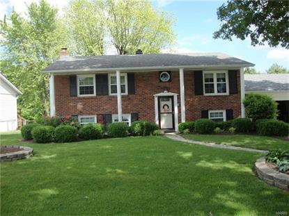 14 May Valley Lane Fenton, MO MLS# 16034611