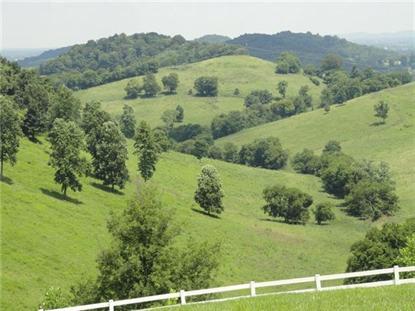 1480 Mount Herman Rd Shelbyville, TN MLS# 1469416