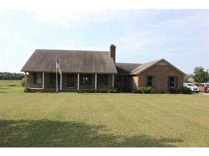 356 Old Petersburg Pike Petersburg, TN MLS# 1484508