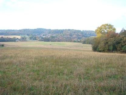 0 Hwy 166 N 55.02 Acres Mount Pleasant, TN MLS# 1494883