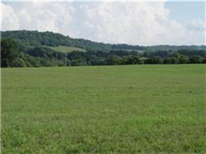 3865 Ostella Rd Cornersville, TN MLS# 1497021