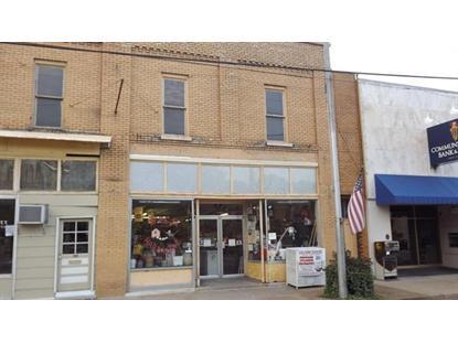 103 Public Square Mount Pleasant, TN MLS# 1510257