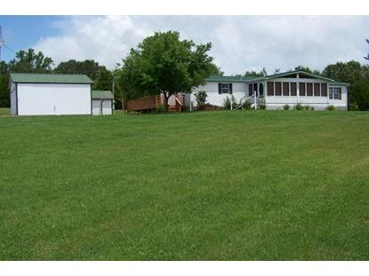 492 Jr Witt Rd Rock Island, TN MLS# 1526720