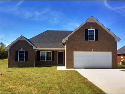 1033 Stratus Dr Murfreesboro, TN MLS# 1527345