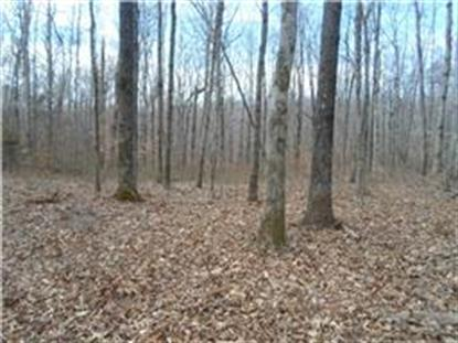 0 N Rocky Point Rd Stewart, TN MLS# 1527833