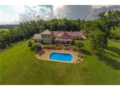 805 New Herman Rd Shelbyville, TN MLS# 1552490