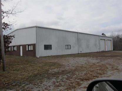 1002 Industrial Park Rd New Johnsonville, TN MLS# 1556490