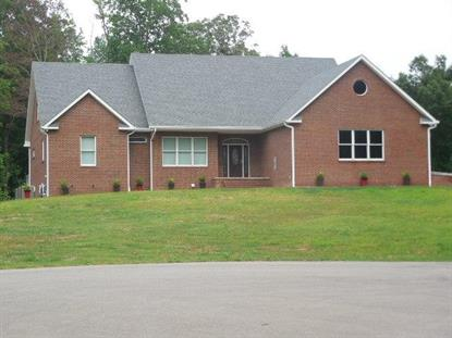 382 Fawn Ck Dr New Johnsonville, TN MLS# 1565493