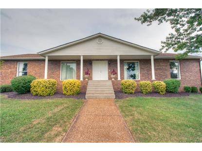 185 CHICKEN PIKE Smyrna, TN MLS# 1566174