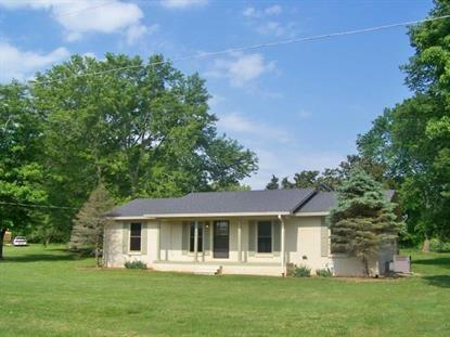 294 Moffitt Dr Rock Island, TN MLS# 1570334