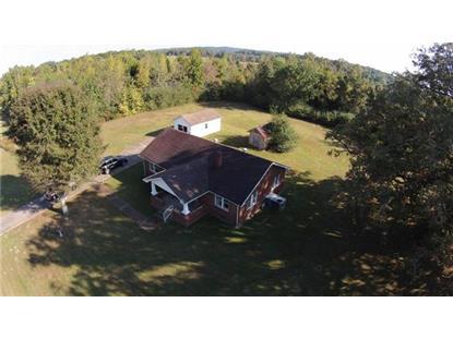 5147 Old State Rt 1  New Johnsonville, TN MLS# 1581227