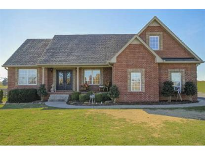 442 Clearview Rd Cottontown, TN MLS# 1589559