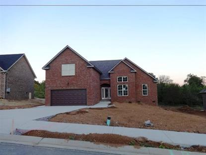 5304 Endurance Ln - Lot 29 Smyrna, TN MLS# 1591608