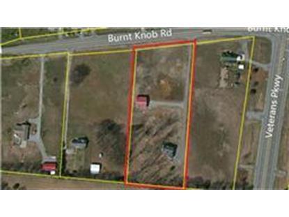 5465 Burnt Knob Rd Murfreesboro, TN MLS# 1618901