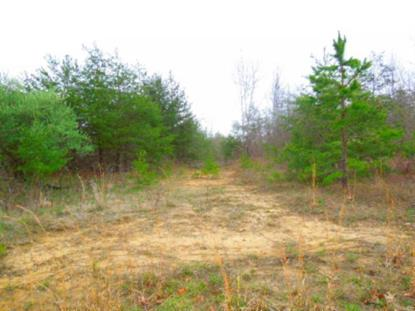 25 .86 Ac.Rocky River Road Rock Island, TN MLS# 1625209