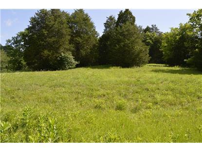 1 Blue Creek Rd Lynnville, TN MLS# 1651190