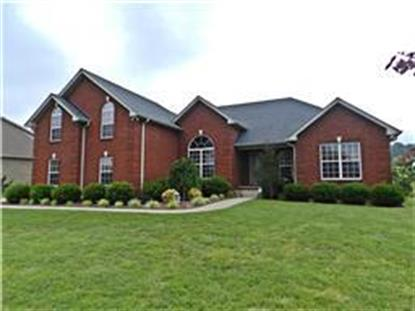 122 Tison Ln Cottontown, TN MLS# 1660017